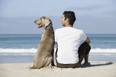Uomo e cane che si siedono sulla spiaggia Immagini Stock