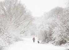 Uomo e cane in neve Fotografie Stock Libere da Diritti