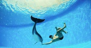 Uomo e delfino Fotografia Stock Libera da Diritti