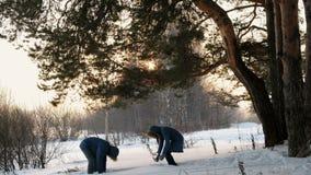 Uomo e donna che giocano le palle di neve nel tramonto della foresta di inverno nella foresta di inverno archivi video