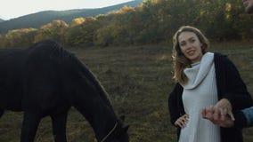 Uomo e donna con il cavallo ad un campo stock footage