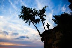 Uomo e un albero Fotografia Stock