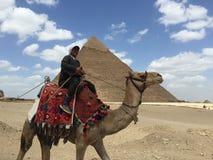 Uomo egiziano naturale Fotografia Stock Libera da Diritti
