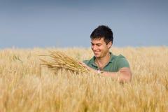 Uomo felice nel giacimento di grano Fotografie Stock Libere da Diritti