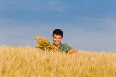 Uomo felice nel giacimento di grano Fotografia Stock