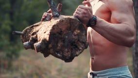 Uomo forte adatto che solleva una connessione una foresta video d archivio