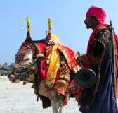 Uomo indiano con la mucca indiana santa decorata con il panno variopinto ed i gioielli sulla spiaggia di Goa del sud Immagini Stock Libere da Diritti