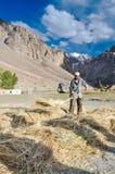 Uomo indigeno con il forcone da fieno nel Tagikistan Fotografie Stock