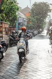 Uomo indonesiano che guida una motocicletta sotto la pioggia, Ubud, Bali Immagine Stock