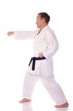 Karateka Fotografie Stock