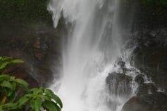 Uomo libero di Aqua Flowing fatto fotografie stock libere da diritti