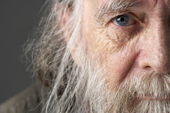 Uomo maggiore con la barba lunga Fotografia Stock Libera da Diritti