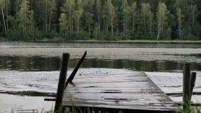 Uomo maturo caucasico che salta dal pilastro di legno in lago archivi video