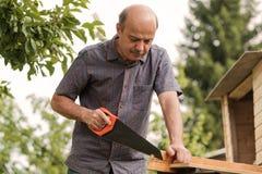 Uomo maturo con i baffi che giudicano una sega disponibila Ceppi seganti, raccoglienti legna da ardere fotografia stock