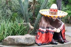 Uomo messicano nella sosta del cactus Immagini Stock Libere da Diritti