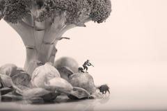 Uomo miniatura Immagini Stock Libere da Diritti