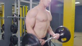 Uomo muscolare che risolve nella palestra che fa gli esercizi con il bilanciere al bicipite video d archivio