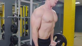 Uomo muscolare che risolve nella palestra che fa gli esercizi con il bilanciere al bicipite stock footage