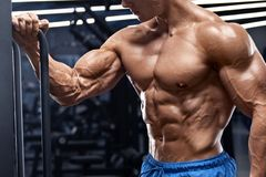 Uomo muscolare che risolve nella palestra che fa gli esercizi per i bicipiti Forte ABS nudo maschio del torso fotografia stock
