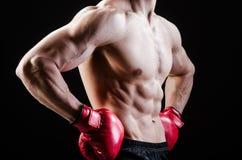 Uomo muscolare nel concetto di pugilato Fotografia Stock Libera da Diritti