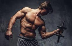 Uomo muscolare senza camicia che fa allenamento del bicipite Fotografia Stock Libera da Diritti