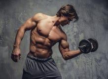 Uomo muscolare senza camicia che fa allenamento del bicipite Fotografia Stock