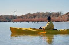 Uomo negli uccelli di sorveglianza del kajak Fotografia Stock Libera da Diritti