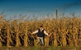 Uomo nel campo di cereale Immagini Stock
