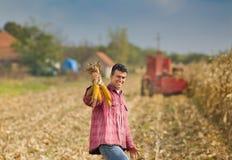 Uomo nel campo di cereale Fotografie Stock Libere da Diritti