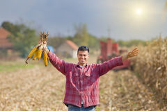 Uomo nel campo di cereale Fotografie Stock