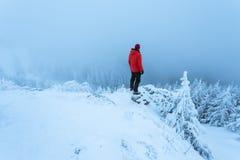 Uomo nel rosso sopra la montagna nevosa che ammira il paesaggio fotografia stock