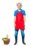 Uomo nell'agricoltore del grembiule con il canestro delle verdure su bianco Fotografia Stock Libera da Diritti