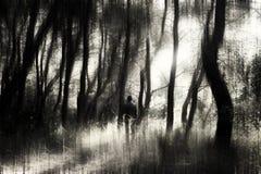 Uomo nella foresta immagine stock