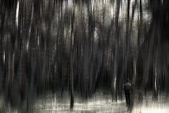 Uomo nella foresta Fotografia Stock Libera da Diritti