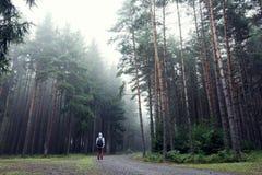 Uomo nella foresta nebbiosa di autunno immagini stock libere da diritti