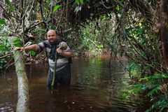 Uomo nella giungla del Congo immagini stock libere da diritti