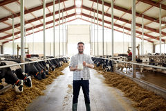 Uomo o agricoltore con il latte di mucche sull'azienda lattiera Fotografie Stock