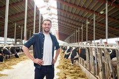 Uomo o agricoltore con le mucche in stalla sull'azienda lattiera Immagini Stock Libere da Diritti