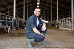 Uomo o agricoltore con le mucche in stalla sull'azienda lattiera Fotografia Stock Libera da Diritti