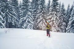 Uomo in occhiali di protezione e racchette da neve sull'orlo dell'abetaia Fotografia Stock Libera da Diritti