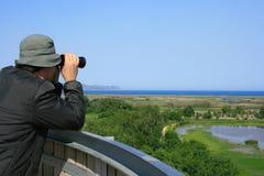Uomo osservando fauna selvatica immagini stock