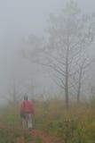 Uomo in parco nazionale Fotografie Stock