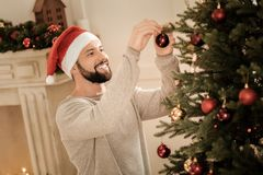 Uomo positivo allegro che decora l'albero di Natale fotografia stock libera da diritti