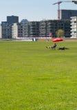 Uomo prendente il sole in un parco Immagini Stock
