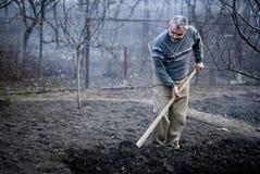 Uomo rumeno anziano che lavora la sua terra in un tradizionale Immagini Stock