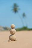 Uomo sabbioso alla spiaggia dell'oceano contro cielo blu e le palme Immagini Stock