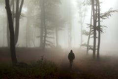Uomo scuro di orrore in foresta nebbiosa nera Immagine Stock