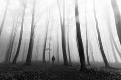 Uomo scuro di orrore in siluetta in foresta nebbiosa Fotografie Stock Libere da Diritti