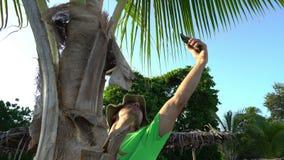 Uomo selvaggio che scala sull'albero e che prova a fare un collegamento sul suo telefono cellulare Mancanza del naufragio di inci stock footage