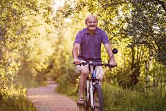 Uomo senior allegro che guida una bici in un parco un bello giorno soleggiato fotografie stock